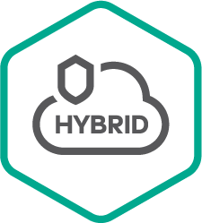 Kaspersky Kaspersky Hybrid Cloud Security
